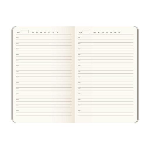 Ежедневник недатированный Canyon BtoBook, черный