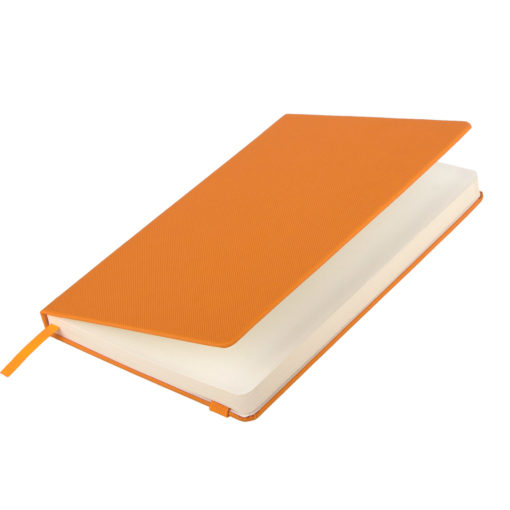 Ежедневник недатированный Canyon BtoBook, оранжевый
