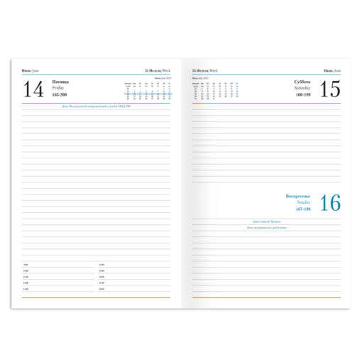Ежедневник Manchester, А5, датированный (2022 г.), апельсин